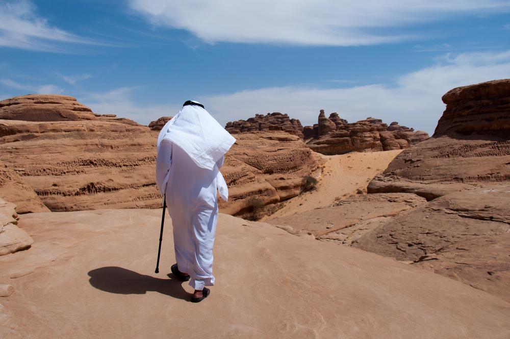 В Саудовской Аравии нашли древнее изображение верблюда