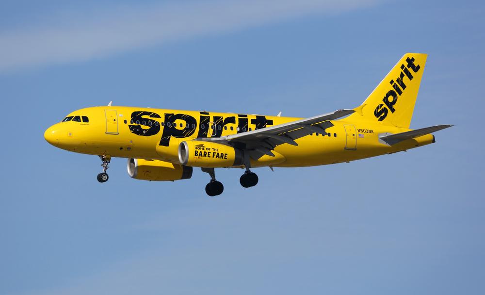 Пассажира самолета посадили за расовое оскорбление стюардессы