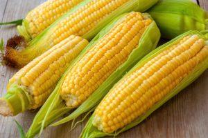 Спустя 20 лет исследования ученые пришли к выводу, что ГМО полезны