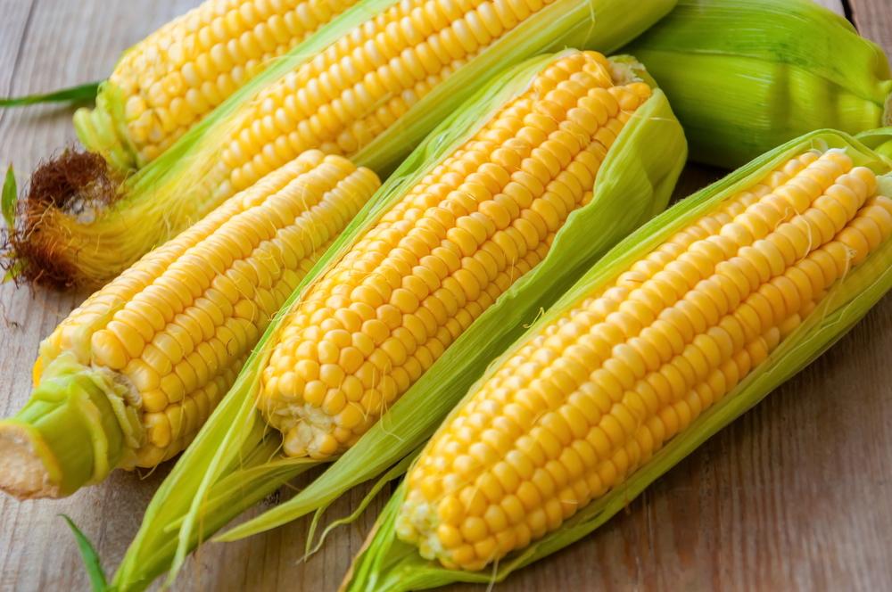 Спустя 20 лет исследования ученые пришли к выводу, что ГМО полезны.Вокруг Света. Украина