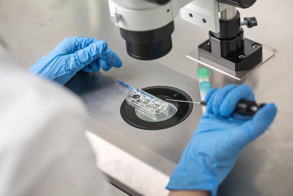 Впервые в истории человеческую яйцеклетку вырастили в лаборатории.Вокруг Света. Украина