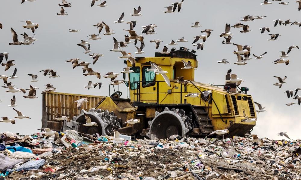 Зачем Великобритания вывозит мусор в Гонконг и Польшу?