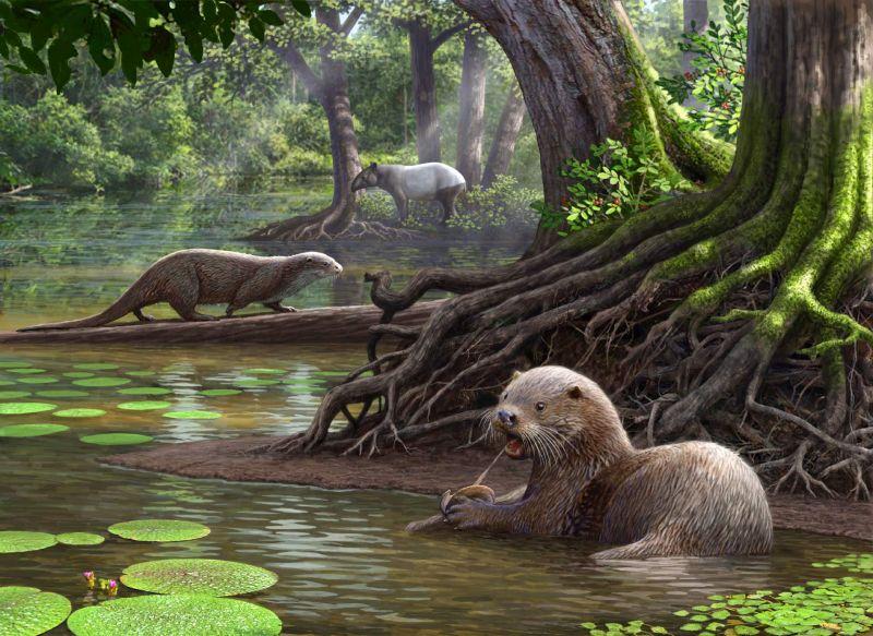 В метро Лос-Анджелеса нашли окаменелости гигантских млекопитающих.Вокруг Света. Украина