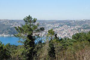 Через Босфор и обратно: однодневное путешествие в Азию