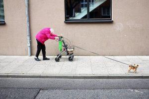 Бабушка с собачкой: лучшие фото 2018 года по версии Sony World Photography Awards