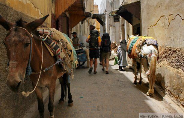 Автостопом по Марокко: красный, синий, белый Автостопом по Марокко: красный, синий, белый IMG 3498 614x395