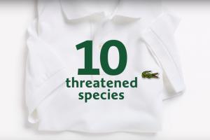 Бренд Lacoste сменил логотип ради помощи исчезающим животным