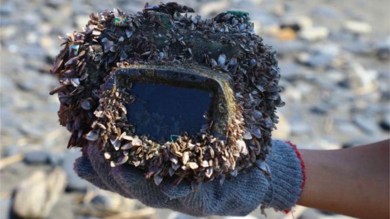 Японке вернули утонувший три года назад фотоаппарат