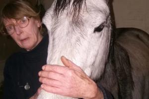 У женщины отняли лошадь, которую она держала в гостиной