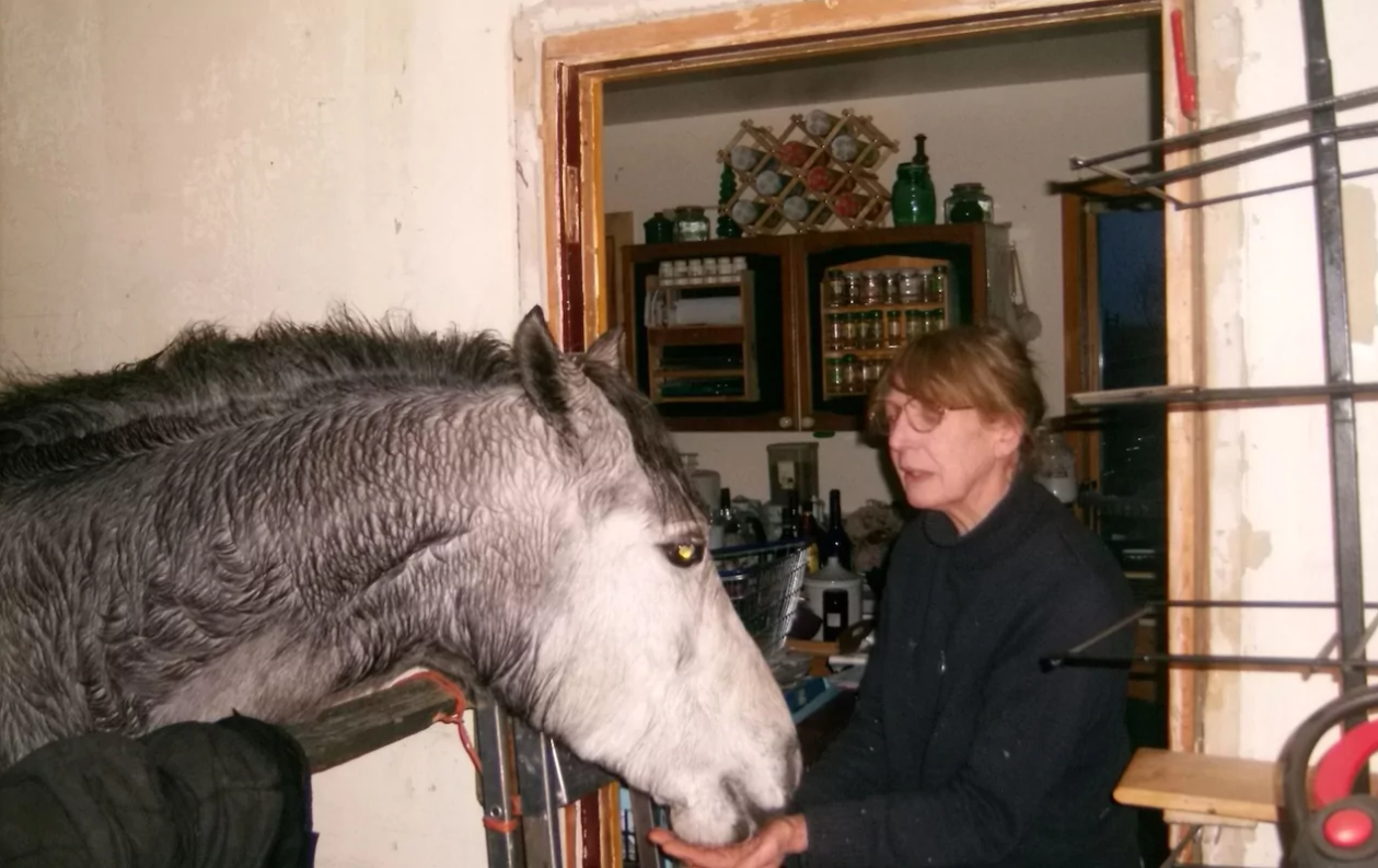 У женщины отняли лошадь, которую она держала в гостиной У женщины отняли лошадь, которую она держала в гостиной kjiflmgjybdg