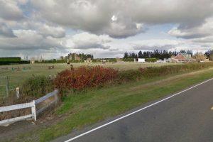 На деревню к дедушке, в Новую Зеландию