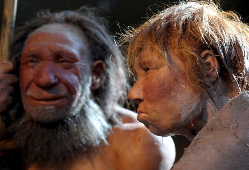 Пещерные люди умели сострадать ближнему: ученые.Вокруг Света. Украина