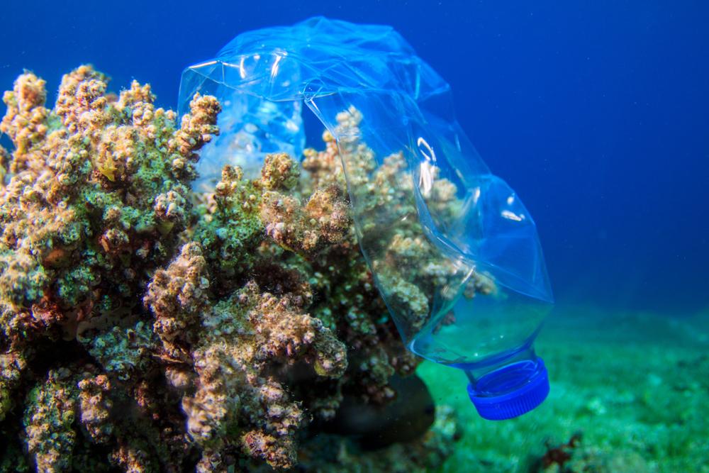 За пластиком в океане будут следить со спутника