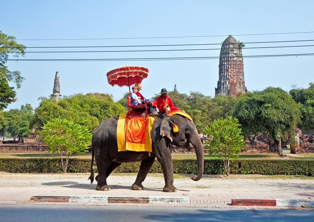 Национальный день слона в Тайланде