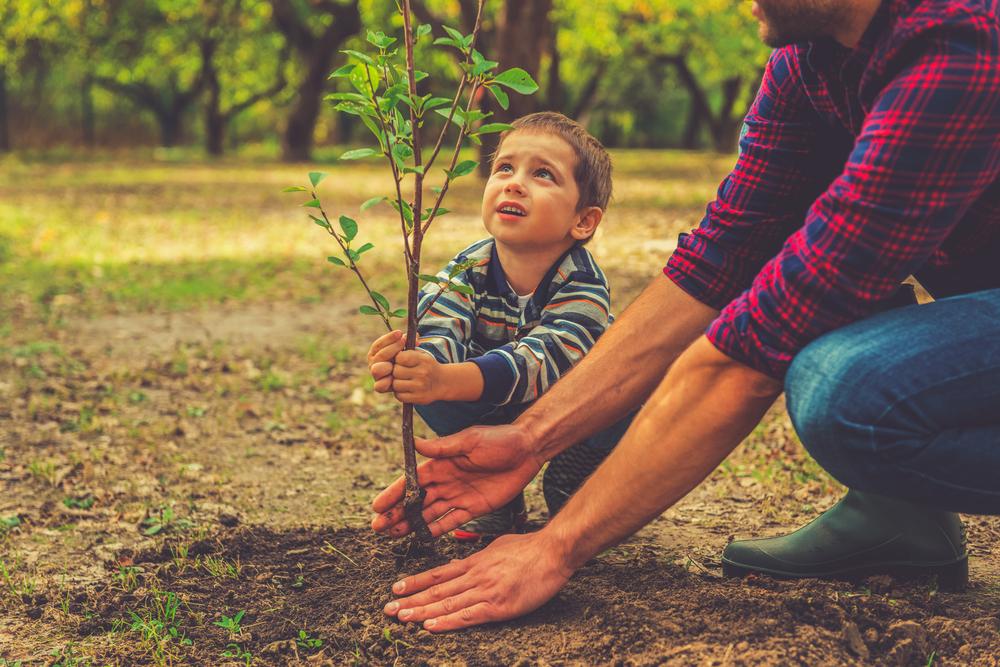 Дети сажают деревья картинки 28
