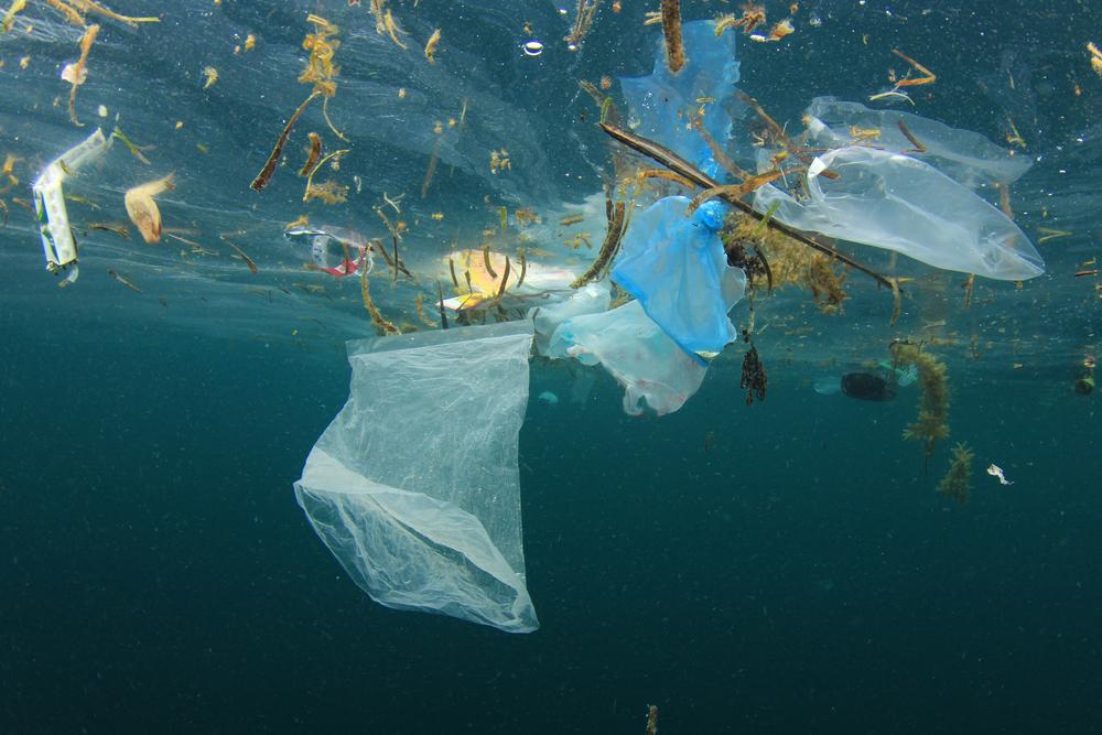 Тихоокеанское мусорное пятно из большого стало гигантским.Вокруг Света. Украина
