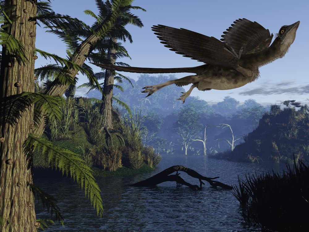 Умел ли археоптерикс летать?