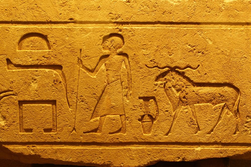 У фараона Египта был план по спасению от глобального потепления У фараона Египта был план по спасению от глобального потепления shutterstock 720202450