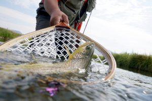 В Украине с апреля временно запрещают рыбалку