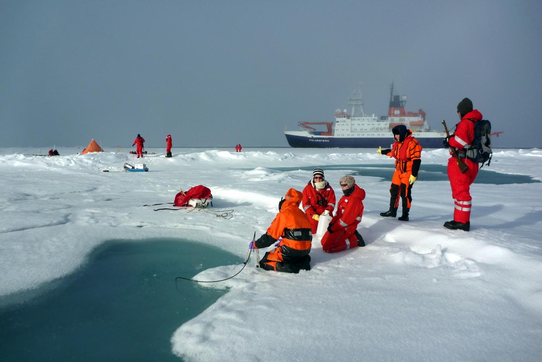 Льды Арктики накопили рекордное количество микропластика: ученые Льды Арктики накопили рекордное количество микропластика: ученые 20120815schmelztuempelmfernandez