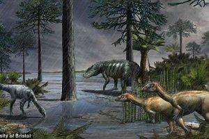 Расцвет динозавров был вызван массовым вымиранием видов