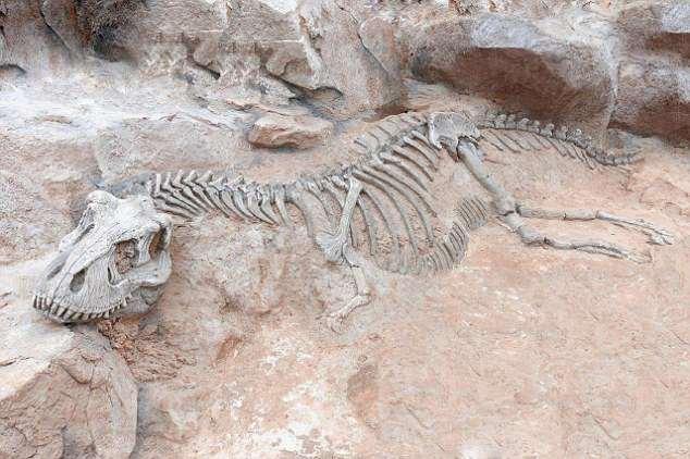 Расцвет динозавров был вызван массовым вымиранием видов Расцвет динозавров был вызван массовым вымиранием видов 4B36812C00000578 5620597 image a 1 1523880800734