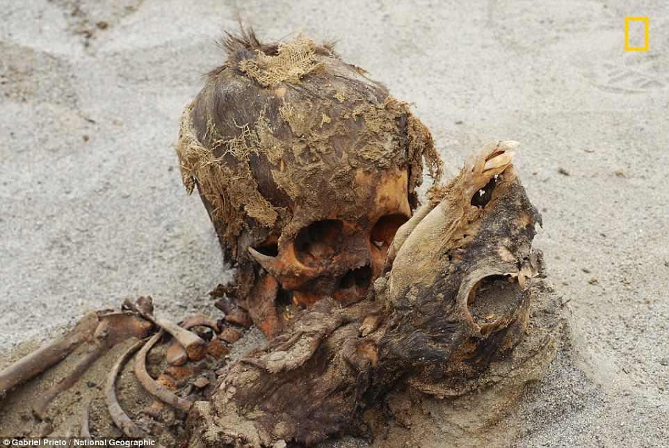 Археологи разгадали загадку крупнейшего детского захоронения в Перу Археологи разгадали загадку крупнейшего детского захоронения в Перу 4B94329900000578 0 image a 21 1524762607733 1