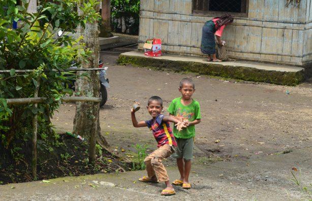 Остров Флорес в Индонезии: хоббиты, бетель и жертвоприношения Остров Флорес в Индонезии: хоббиты, бетель и жертвоприношения DSC 2195 614x395