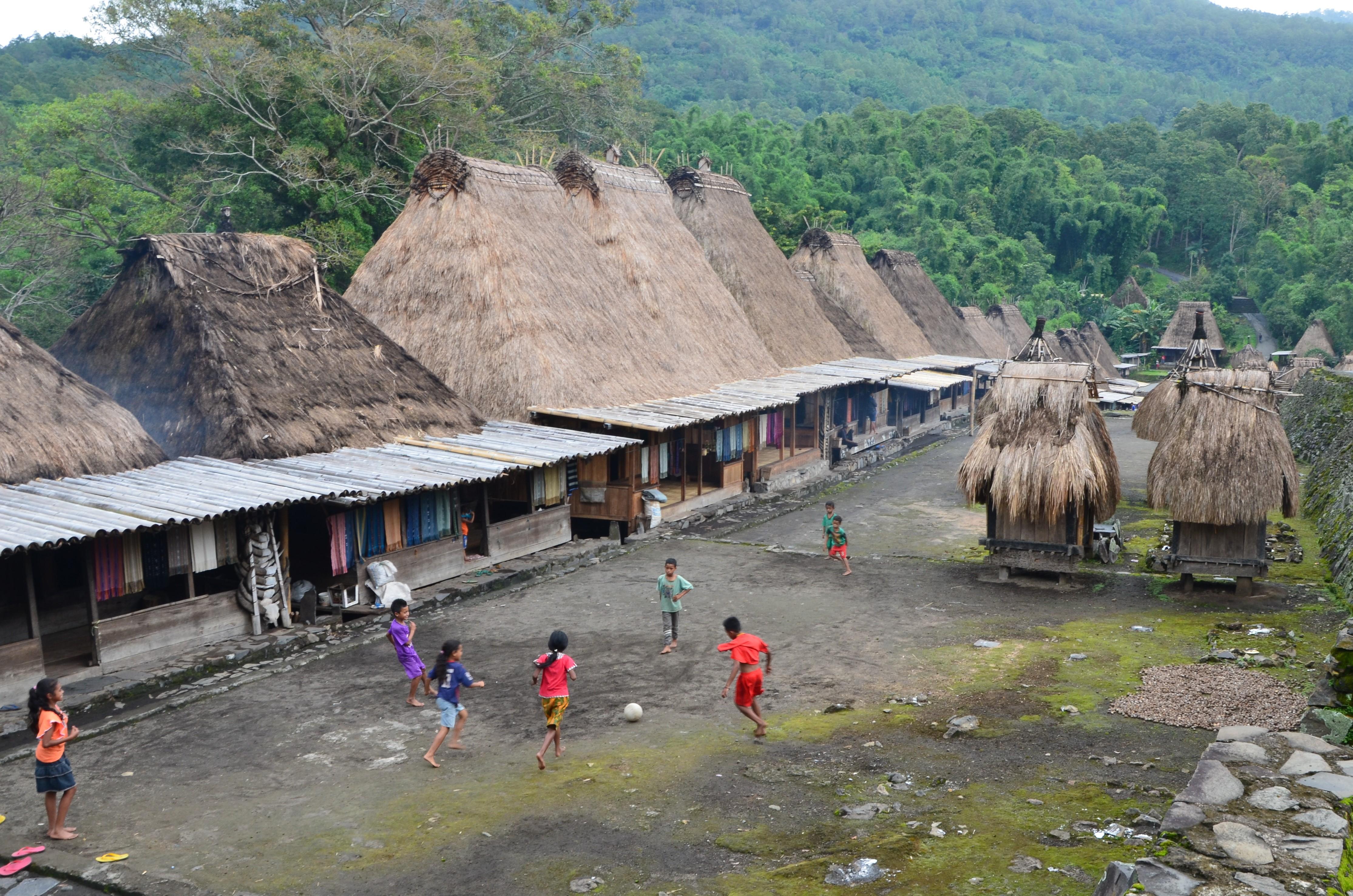 Остров Флорес в Индонезии: хоббиты, бетель и жертвоприношения.Вокруг Света. Украина
