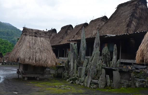 Остров Флорес в Индонезии: хоббиты, бетель и жертвоприношения Остров Флорес в Индонезии: хоббиты, бетель и жертвоприношения DSC 2340 614x395