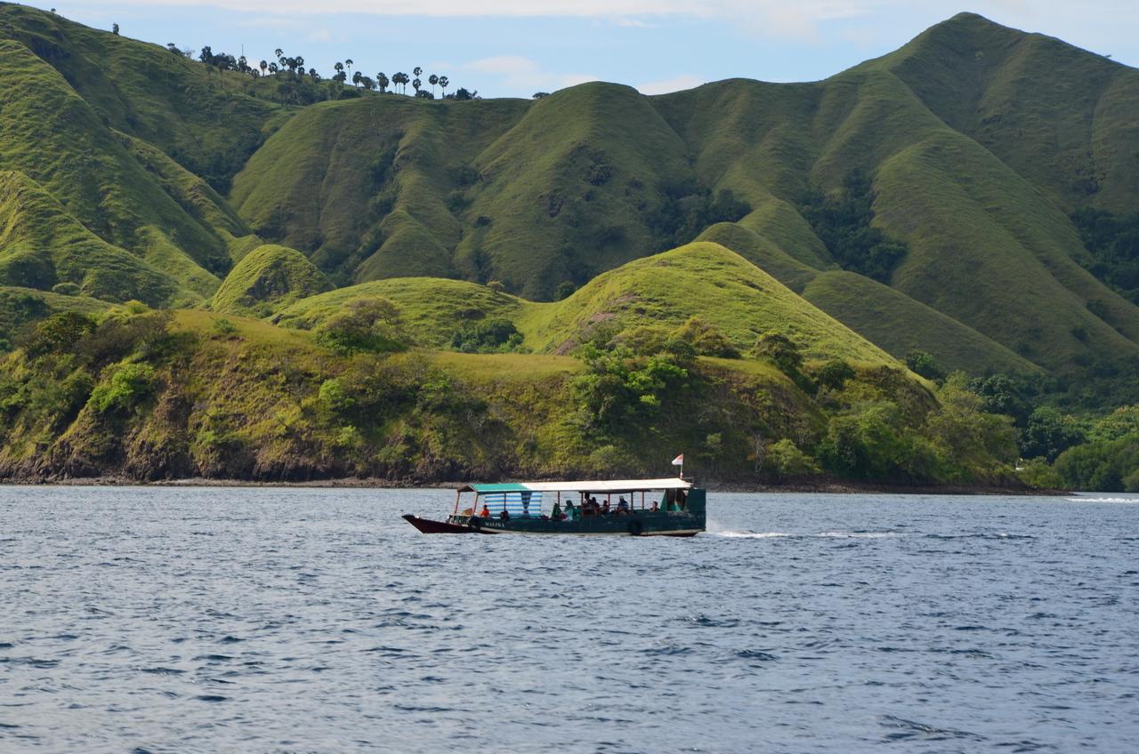Рыба-луна, драконы и розовые пляжи: круиз по островам Индонезии