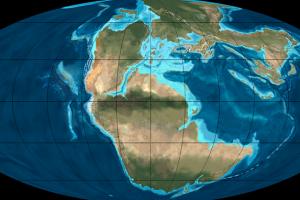 В какой пазл соединятся континенты Земли через 300 лет? (видео)