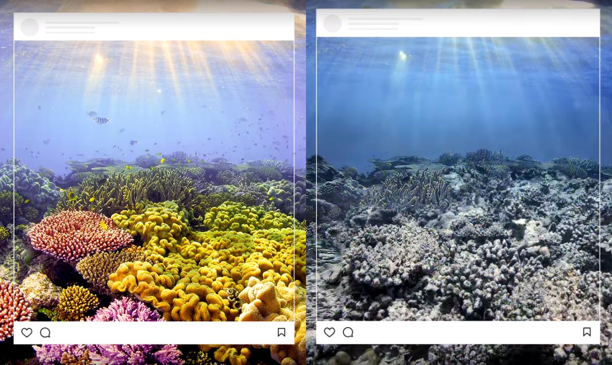 Instagram-пользователей подразнили снимками красивых мест, которых больше нет