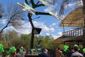 В Киеве установили smart -дерево с Wi-Fi