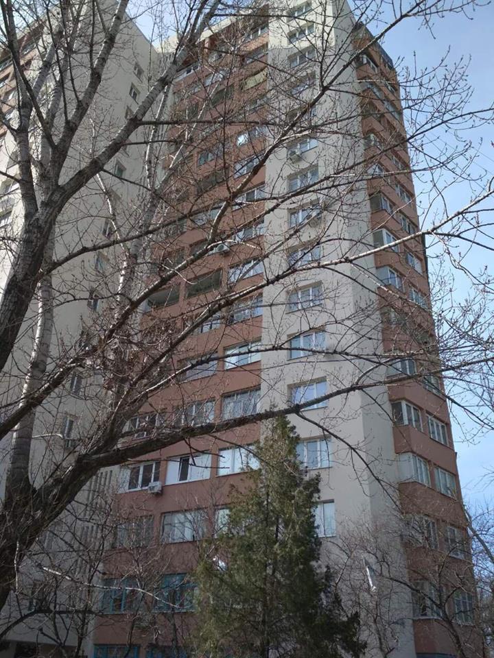 В Днепре сотни спящих летучих мышей выбросили с балкона