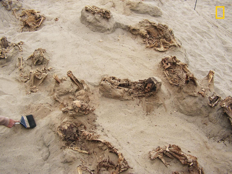 Археологи разгадали загадку крупнейшего детского захоронения в Перу Археологи разгадали загадку крупнейшего детского захоронения в Перу ngnewschildsacrifice002