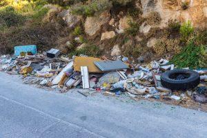 Как в Польше решают проблему мусора на обочинах