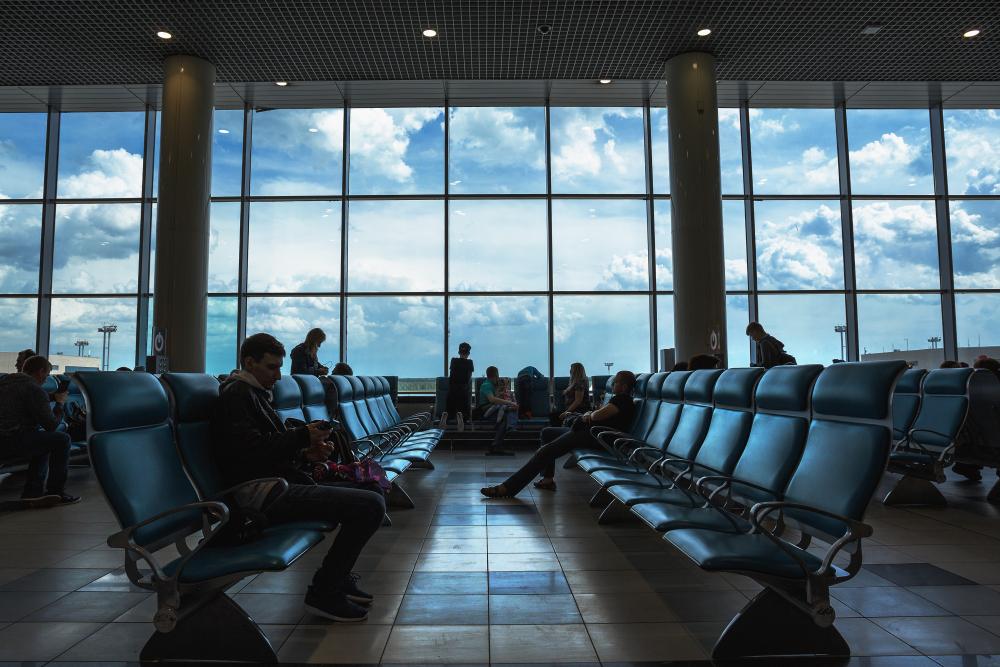 На животных не скакать: в аэропортах Москвы ввели ряд запретов