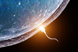 Для чего NASA отправило человеческую сперму в космос?