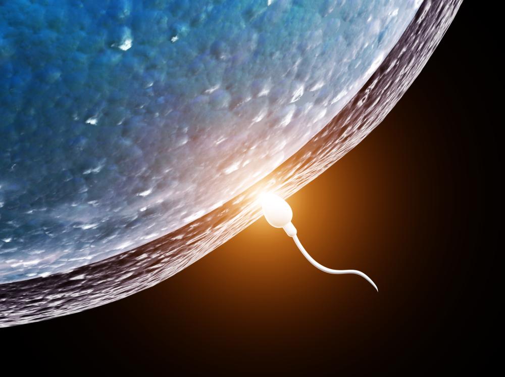 Для чего NASA отправило человеческую сперму в космос?.Вокруг Света. Украина