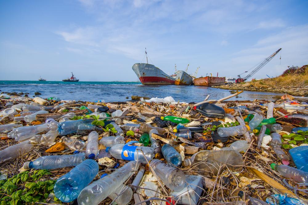 Создан фермент, способный переваривать пластиковые бутылки.Вокруг Света. Украина