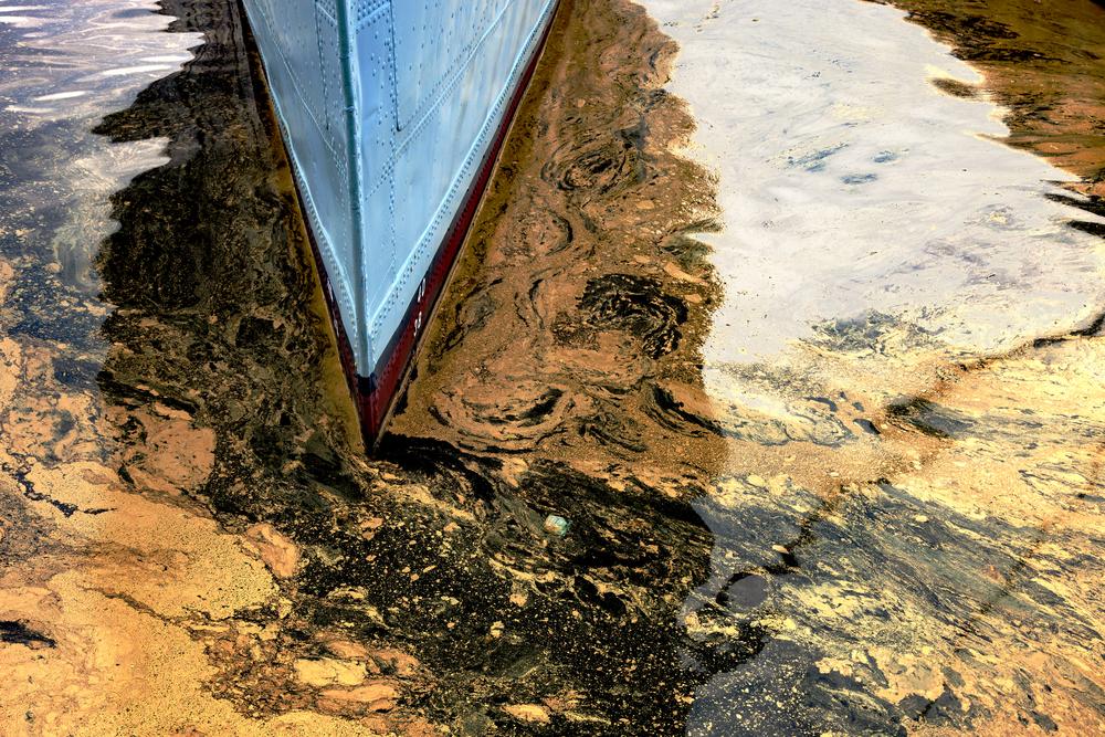 Микробиологи обнаружили бактерию, способную переварить нефть