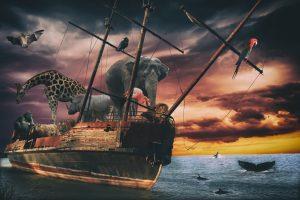 Ноев ковчег: ученые создадут генетическую библиотеку всего живого