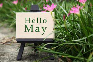 Где провести майские праздники: афиша мероприятий