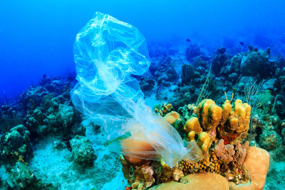 Океан будущего: детям показали пластик вместо рыб