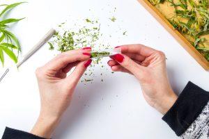 В Нидерландах начали ограничивать употребление марихуаны