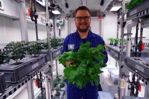 В Антарктике впервые вырастили свежие овощи