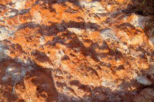 На Марсе нашли окаменелости со следами жизни