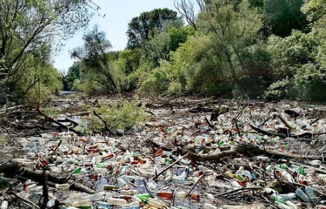 В Словакии реки заросли украинским мусором В Словакии реки заросли украинским мусором 1 5