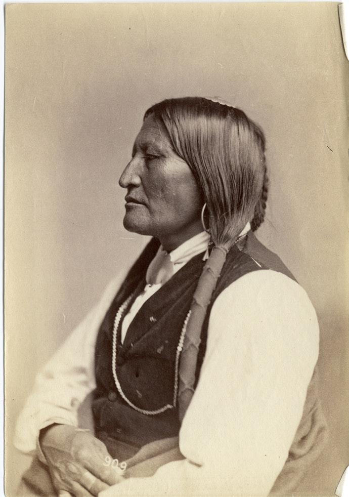 В интернете появились снимки коренных американцев конца xix века В интернете появились снимки коренных американцев конца XIX века 19th century photos native americans 01